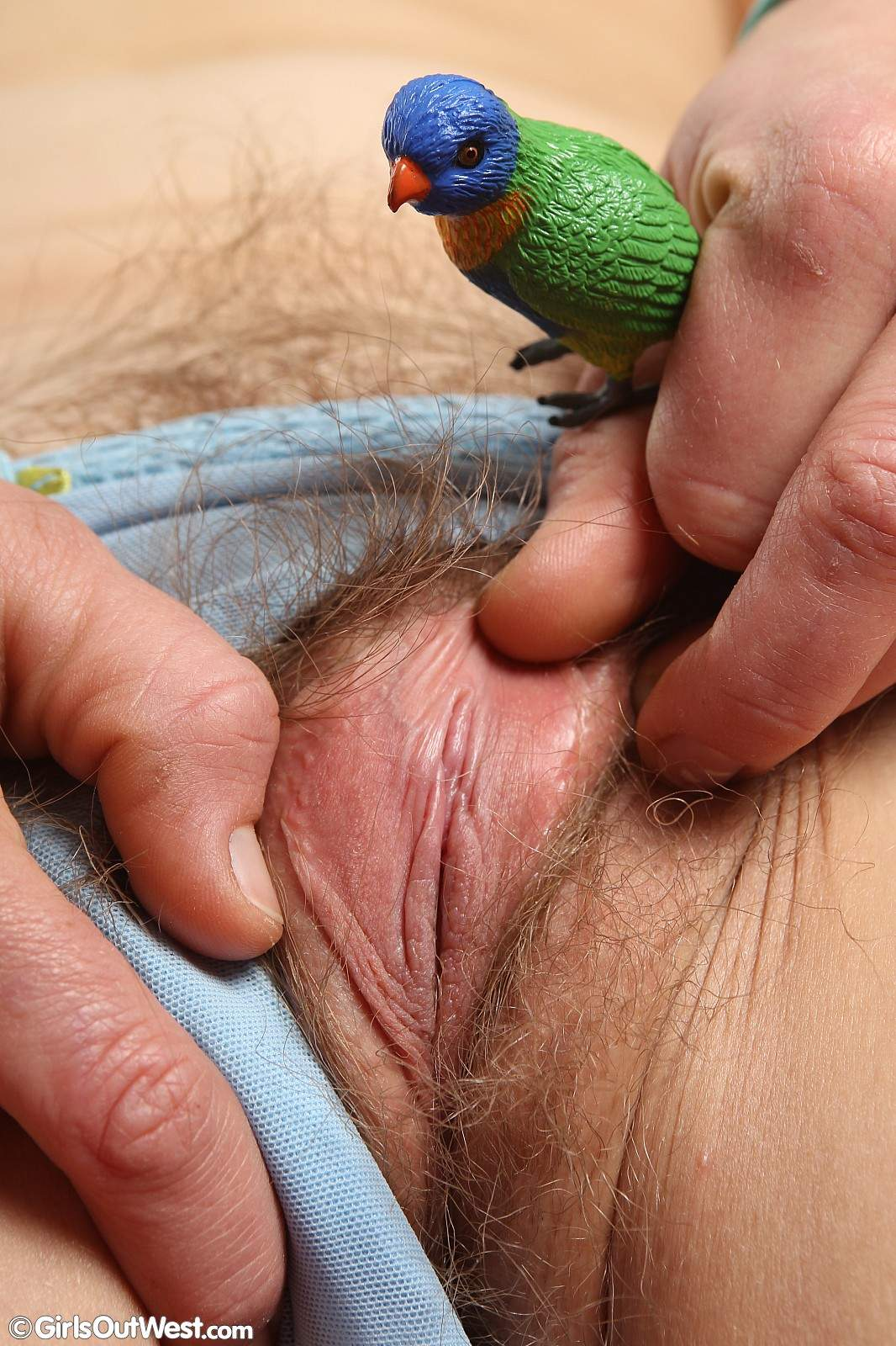 image Girls out west australian girl massaging her clitoris